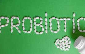 MEMPERBAIKI BANGSA DARI PERUT:  Sekelumit Kisah tentang Probiotik dan Prebiotik